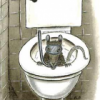 Thumbnail image for Do not use-rat in toilet