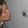 Thumbnail image for Kiss your spider fears goodbye