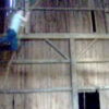 Thumbnail image for Rafter tag and bird control