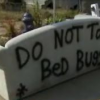 Thumbnail image for Bed bugs in yard sales-Caveat emptor