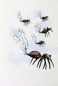 ballooning-spiders pestcemetery.com
