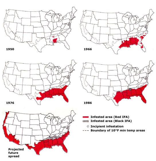 Fire Ants Map