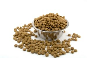 spilled dog food pestcemetery 300x200 Pest proofing your pets food