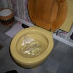103 2780 150x150 One Tip Every Snowbird Should Know (Plastic Wrap Your Toilet)