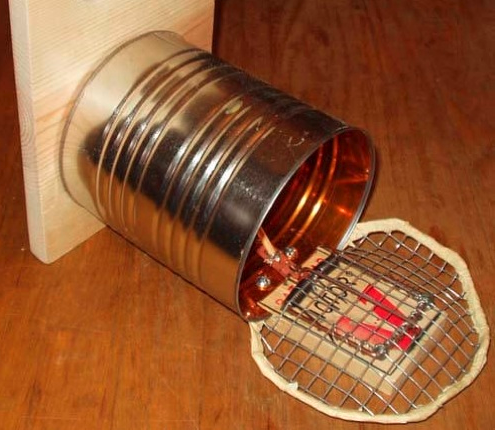 3 Easy Home Made Mouse Traps Pest Cemetery