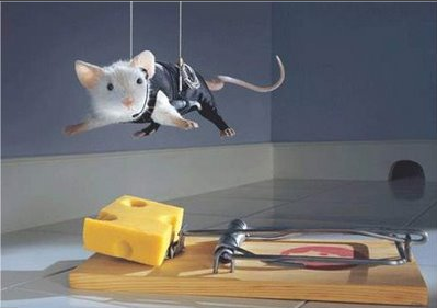 trap ease america mouse traps essay Company case: trap-ease america: the big cheese of mouse traps question no 01:  trap-ease mouse trap essay trap-ease america questions1)martha and the trap-ease america investors believe they face a once-in-a-lifetime opportunity what information do they need to evaluate thisopportunity.