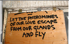 pheromone sign pestcemetery.com