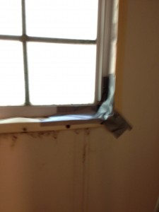 photo 1 copy 8 e1344902583746 225x300 Pest Proofing Your Home DIY Style / Anything Helps?