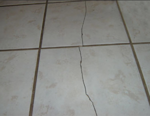 cracked tile from termite work http://pestcemetery.com/