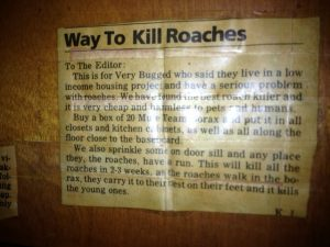 photo 6 e1415158358258 300x225 The Way To Kill Roaches and The Links That'll Guarantee Results