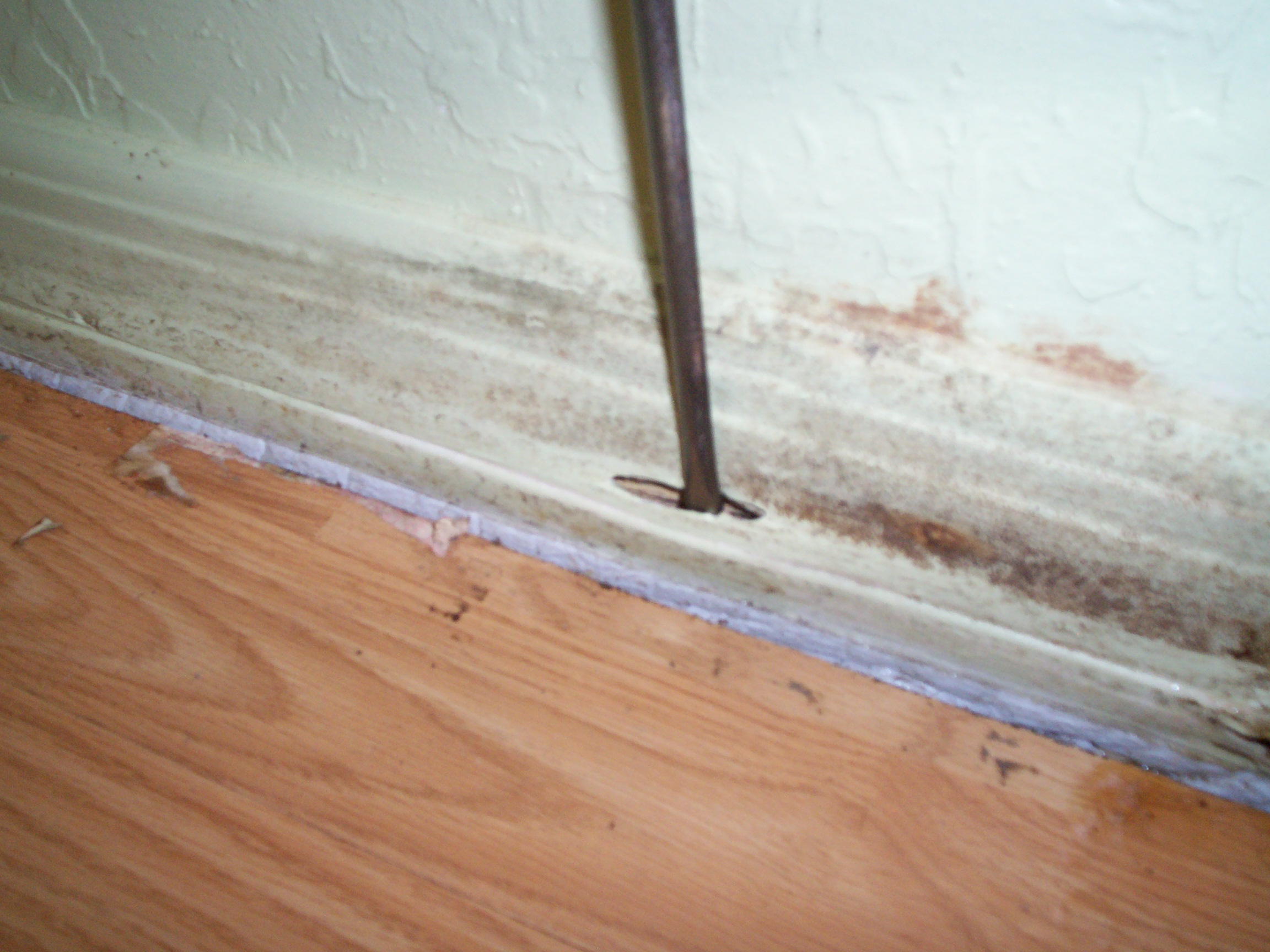Termite Inspector Damage Why Inspectors Tap Wood Pest